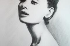 Audrey Hepburn; 50x70 cm; kuiv pintsel, paber; 2013